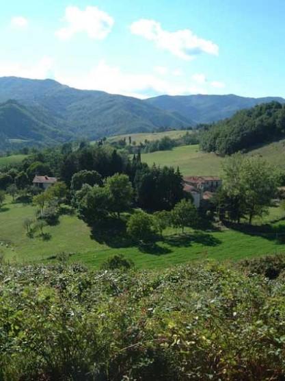 La fattoria for Planimetrie storiche della fattoria